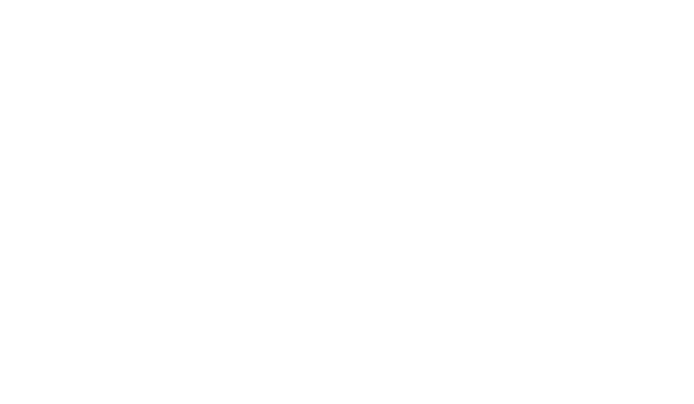 Lion Village logo